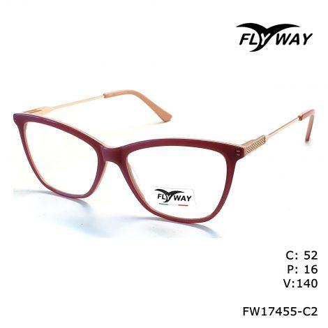 FW17455-C2