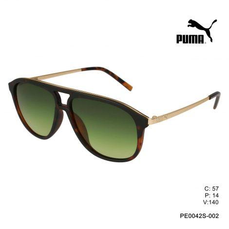 PE0042S-002