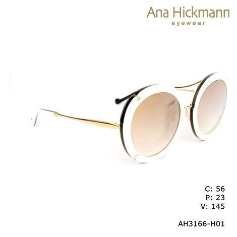 AH3166-H01